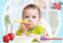 """Photo of وصفات أطعمة صحية يمكن أن تصنعيها بنفسك لطفلك دون السنة """"الجزء الثاني"""""""